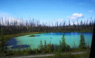 First section of Cassiar Highway had bad fires in 2011