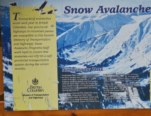 Snow Avalanche Programs