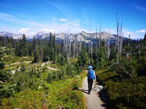Summit hiking trail