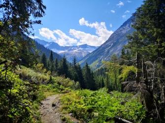 View along Loop Brook Trail