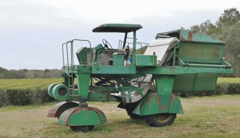 Custom harvester named Green Giant