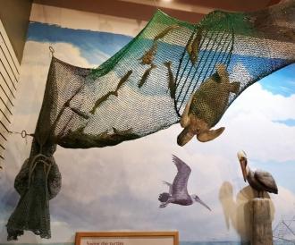 Shrimp net with escape hatch for turtles