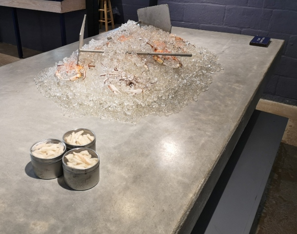 Model of the crab picking station