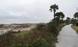 Coastal trail along the dunes
