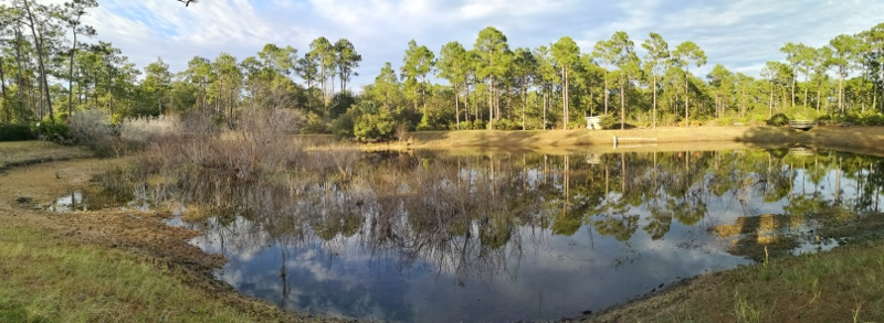 Panorama of the Bird Blind pond