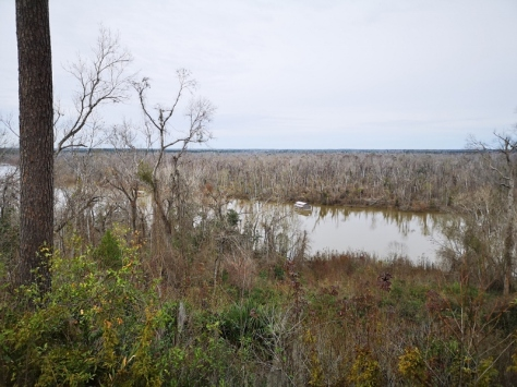 View from the bluff of the Apalachicola River with fishing camp houses anchored