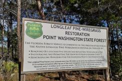 Longleaf Greenway Trail