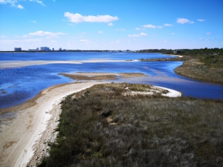 View from the East Beach Tower on the Estuary Trail