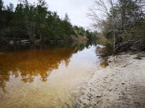 Blackwater River along Nature Trail