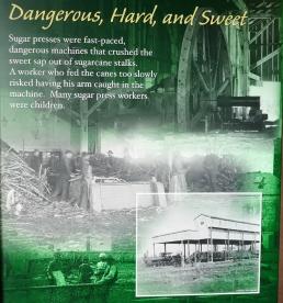 Fontainebleau Sugar Plantation