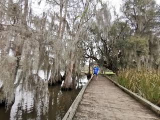 Boardwalk along the river
