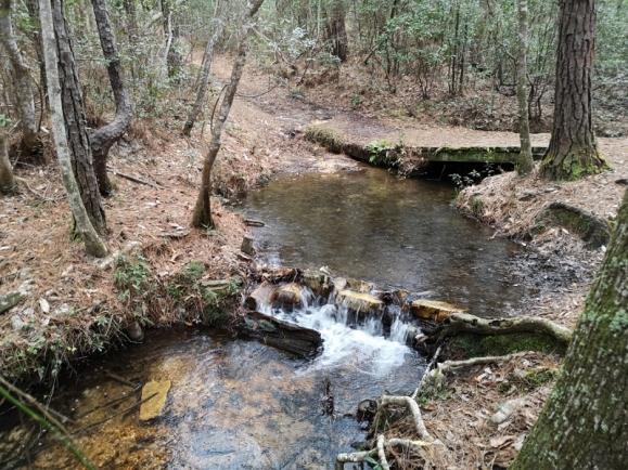 Bridge for hiking trails