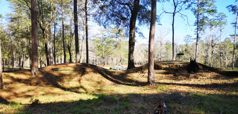 Breastworks Trail parallel to Confederate line