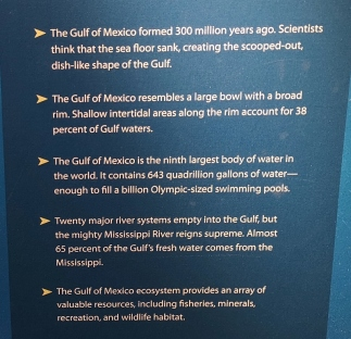 Gulf of Mexico Facts