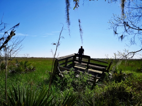 Marsh viewing platform we assume destroyed by Hurricane Katrina