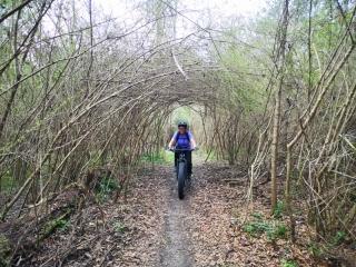 Zephyr Trail