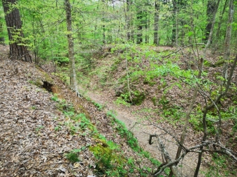 Sunken Trace from above